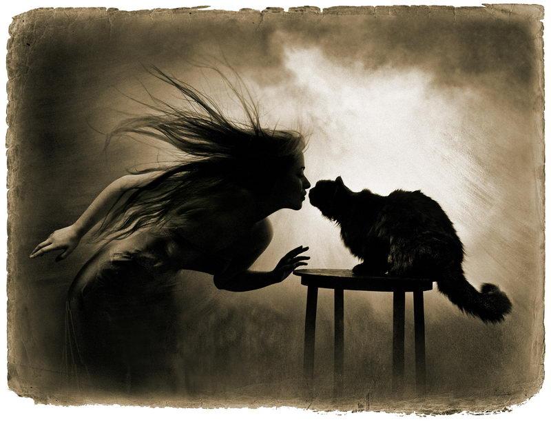 Маргарита и кот